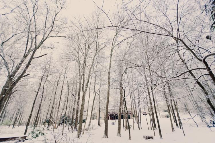 SnowDay2014-6